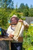 Beekeeper with honeycombs in hands — Stock Photo