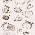 Hand drawing fruits — Stock Vector #58422171