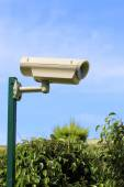 Camera for implementation of video monitoring — Stock Photo