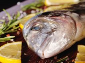 Raw dorado fish with rosemary and sea salt — Foto Stock