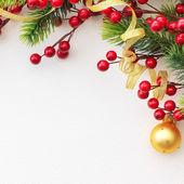 Christmas Pine and Berries — Stock Photo