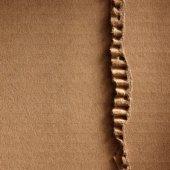 Papelão ondulado — Fotografia Stock