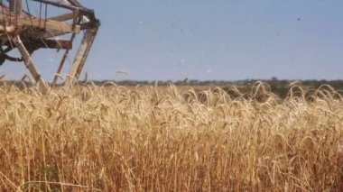 Front blades of combine harvester — Stock Video