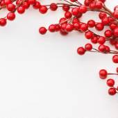 Christmas Berries — Stock Photo