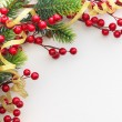 Christmas Pine and Berries — Stock Photo #59488035