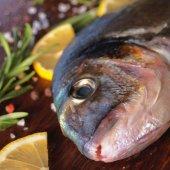 Raw dorado fish — Stock Photo
