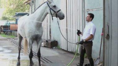他的马的男人 — 图库视频影像