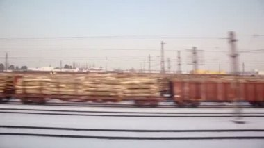 Freight trains on railroad — Stock Video