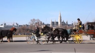 Carriages with horses in Vienna — Stock Video