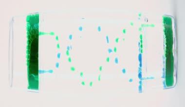 Green and blue drops drip — Vídeo de stock