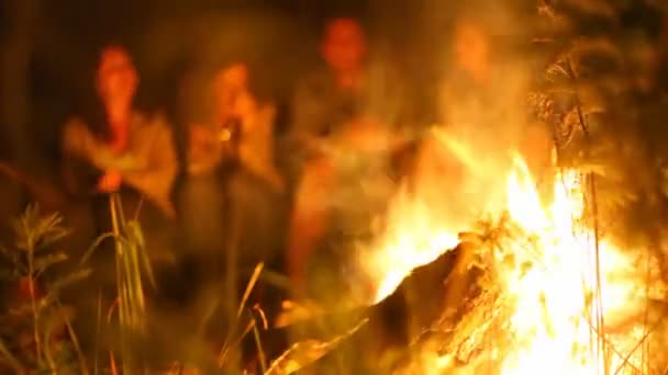 Four people sit at night at fire in wood — Vidéo