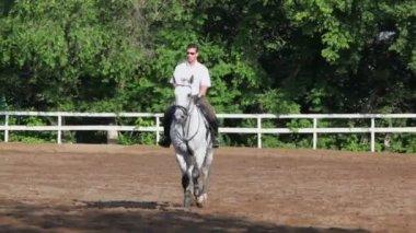 Jockey rides on horseback — Stock Video