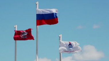 Flags of Russian Federation and Moscow — Stock Video