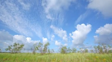 Clouds on blue sky — Stock Video