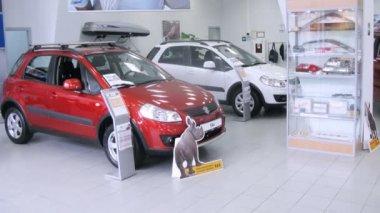 Suzuki Sx4 stands in motor show — Stock Video