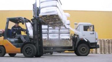 Forklift operators put keg pallet — Video Stock