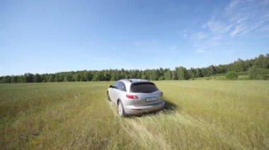 Silvery jeep  in field — Stock Video