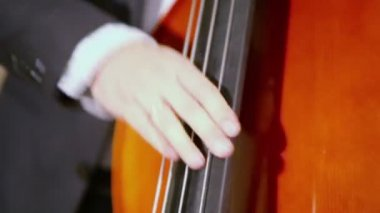 Man yanks strings on contrabass — Stock Video