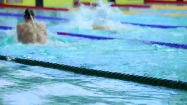 プールで平泳ぎで泳ぐスポーツマン — ストックビデオ
