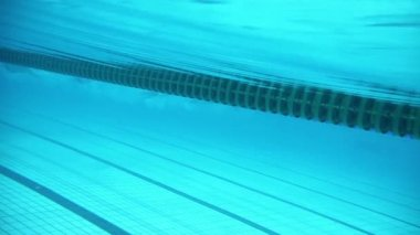 Sportsmen swim during race in basin — Stock Video
