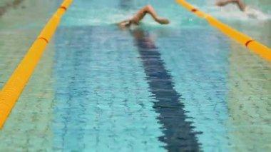 Sportsmen swim in crawl style — Stock Video
