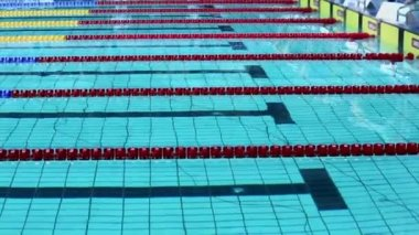 Group of swimmers jumps into water — Stok video