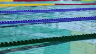 Swimmers jump into water and start swimming — Stock Video