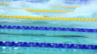 Several sportsmen swim in butterfly style — Stock Video
