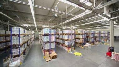Mercadorias em prateleiras em armazém — Vídeo stock