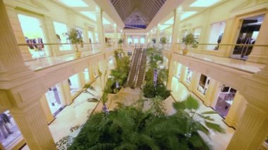 Plants near escalator in shopping center — ストックビデオ