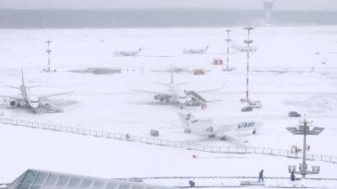 Parked planes on snowy Vnukovo airport — ストックビデオ