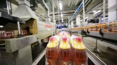 Bottles of beer moving on conveyer line — Stock Video