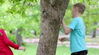 Boy and girl walk around tree — Stock Video