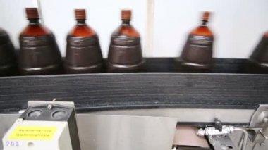 Many brown bottles on conveyor line — Stock Video
