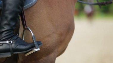 Horseman leg at stirrup on horse — Stock Video