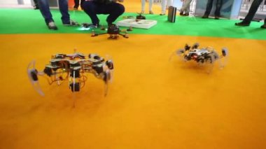 Inventor demonstrating movement of spider robot — Stock Video