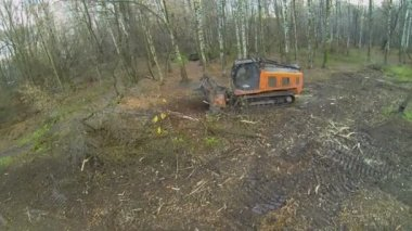 Special machine cleans swath from hag — Stock Video