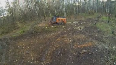 Special machine cleans glade — Stock Video