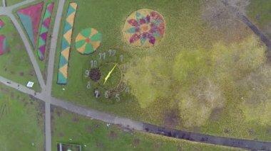 Citizen walk near colourful flowerbeds — Stock Video