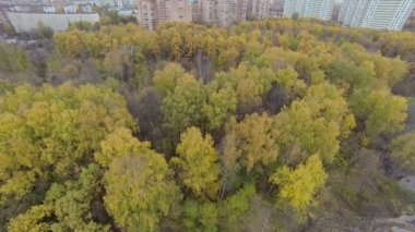 Cityscape with power lines along wet swath and felling debris — Stock Video