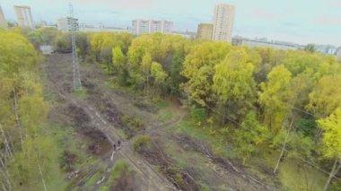 People cross swath with felling debris in park — Stock Video