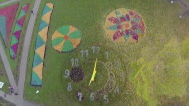 Citizen walk near colorful flowerbeds — Stock Video