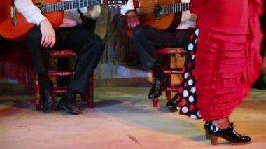 Female flamenco dancer legs — Stock Video