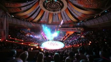 Group of gymnasts performs at arena of Circus — Stock Video