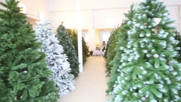Storage room with artificial Christmas trees — Vídeo de stock