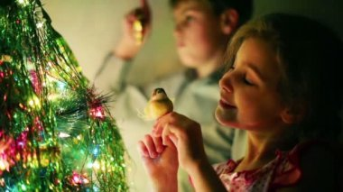 Boy and girl decorate Christmas tree — Stock Video