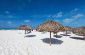 Belle plage des caraïbes — Photo