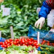 Herbs and vegetables at market — Stock Photo #54222419