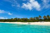 Picture perfect beach at Caribbean — Stock fotografie