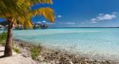 Perfektní pláž na ostrově Bora bora — Stock fotografie